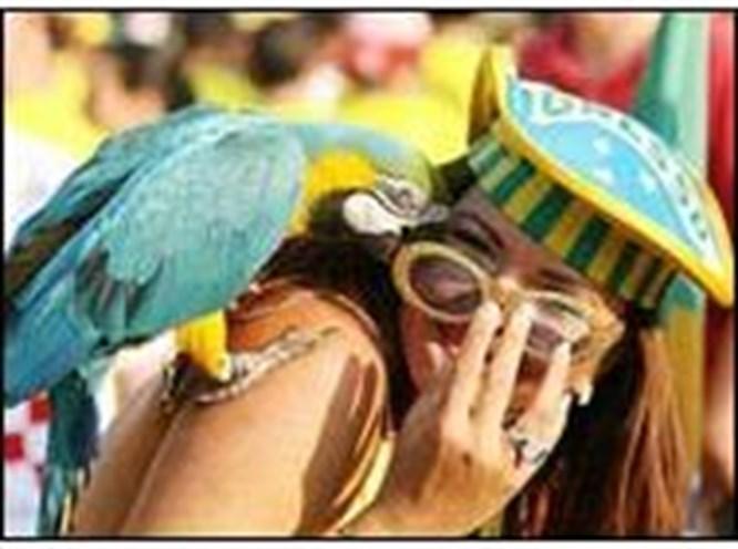 Almanya'da karnaval